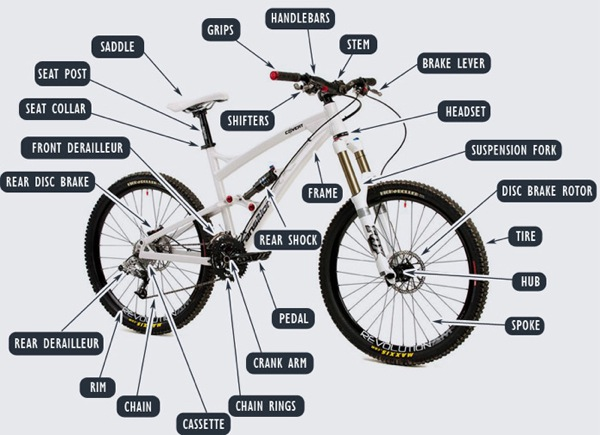 mountain bikes reviews comparisons specs vital mtb most expensive mountain bike 600x435