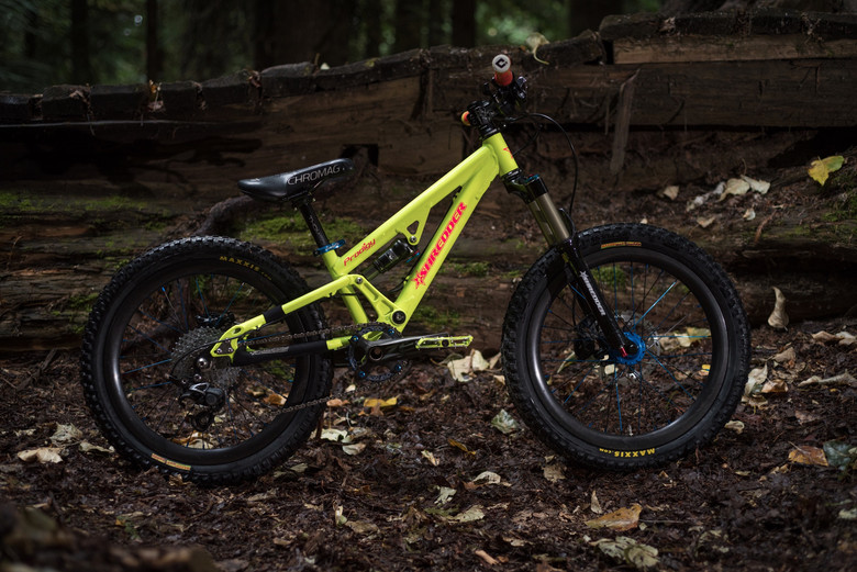 Gavin's Lil Shredder DH bike