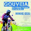 C100_full_gouveia_dhi_2013