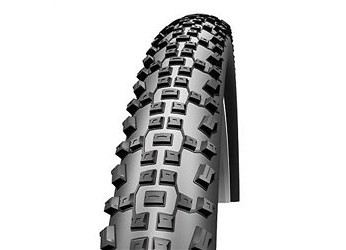 Schwalbe Racing Ralph Evolution Tire  24524.jpg
