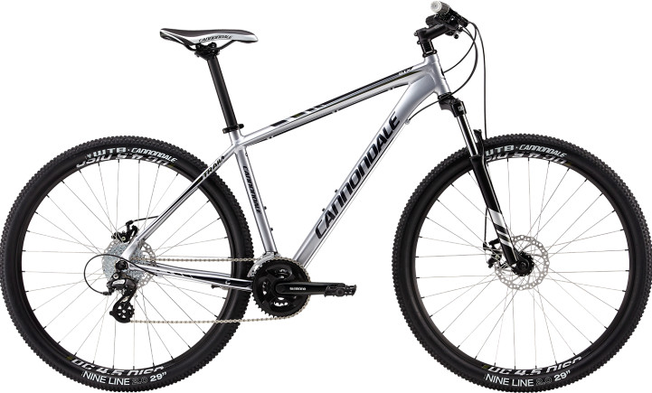 2013 Cannondale Trail 29er 6 Bike 2013 Cannondale Trail 29er 6 (silver)