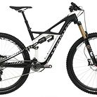 C138_2013_specialized_s_works_enduro_29_se
