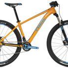 C138_trek_stache_7_bike