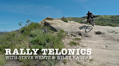 C235x132_telonicsa