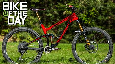 C366x206_scout_zach_spot
