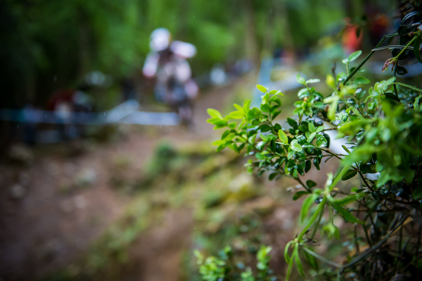 The story of the day. By the time the fastest qualifiers came down, the course was completely impossible to ride. Loic still sent the gully gap in the middle of the monsoon - major NFG.