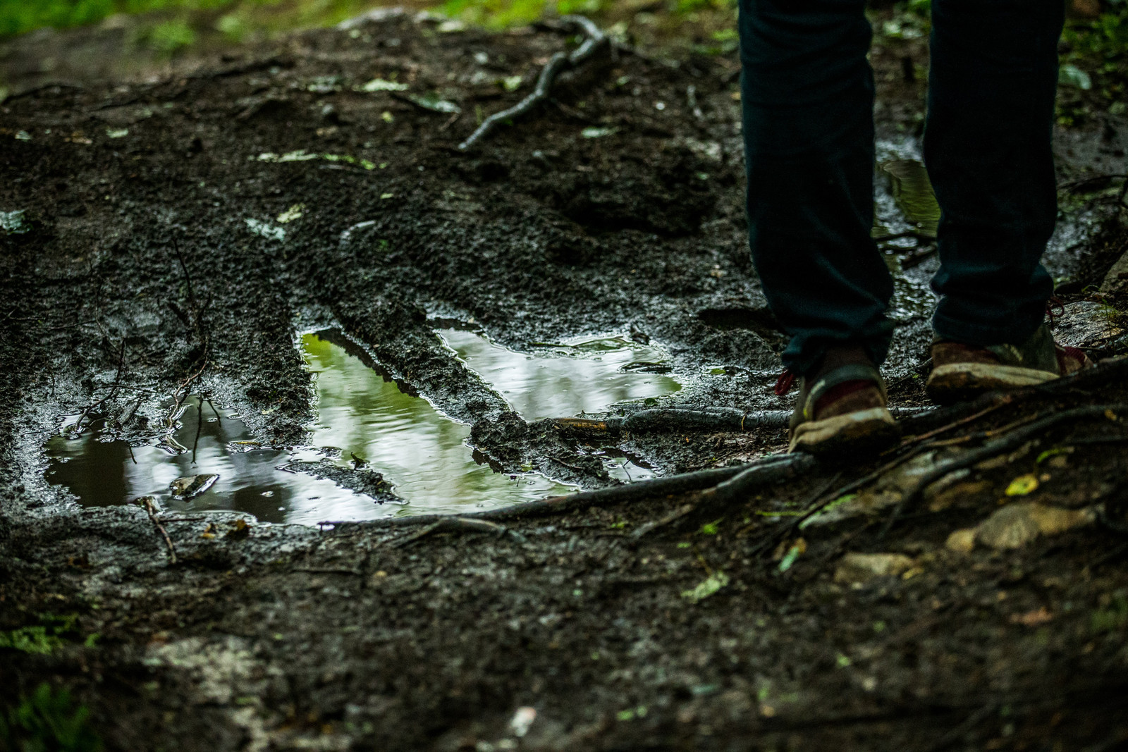 Puddles are just as common as roots on this track, and they are all questionable in their depth.
