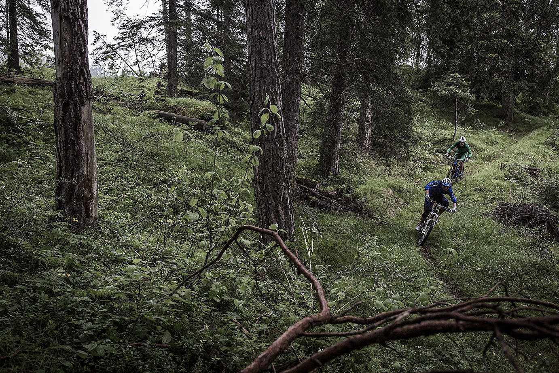 Singletrail - Hannes Klausner - Mountain Biking Pictures - Vital MTB