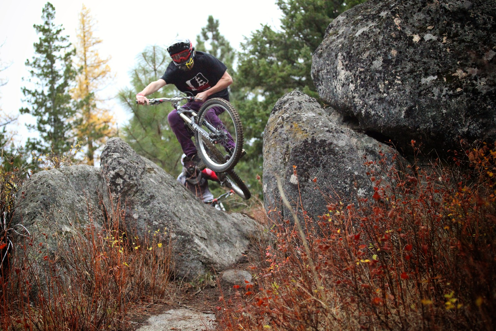 Fall in Idaho - Skye_Schillhammer - Mountain Biking Pictures - Vital MTB