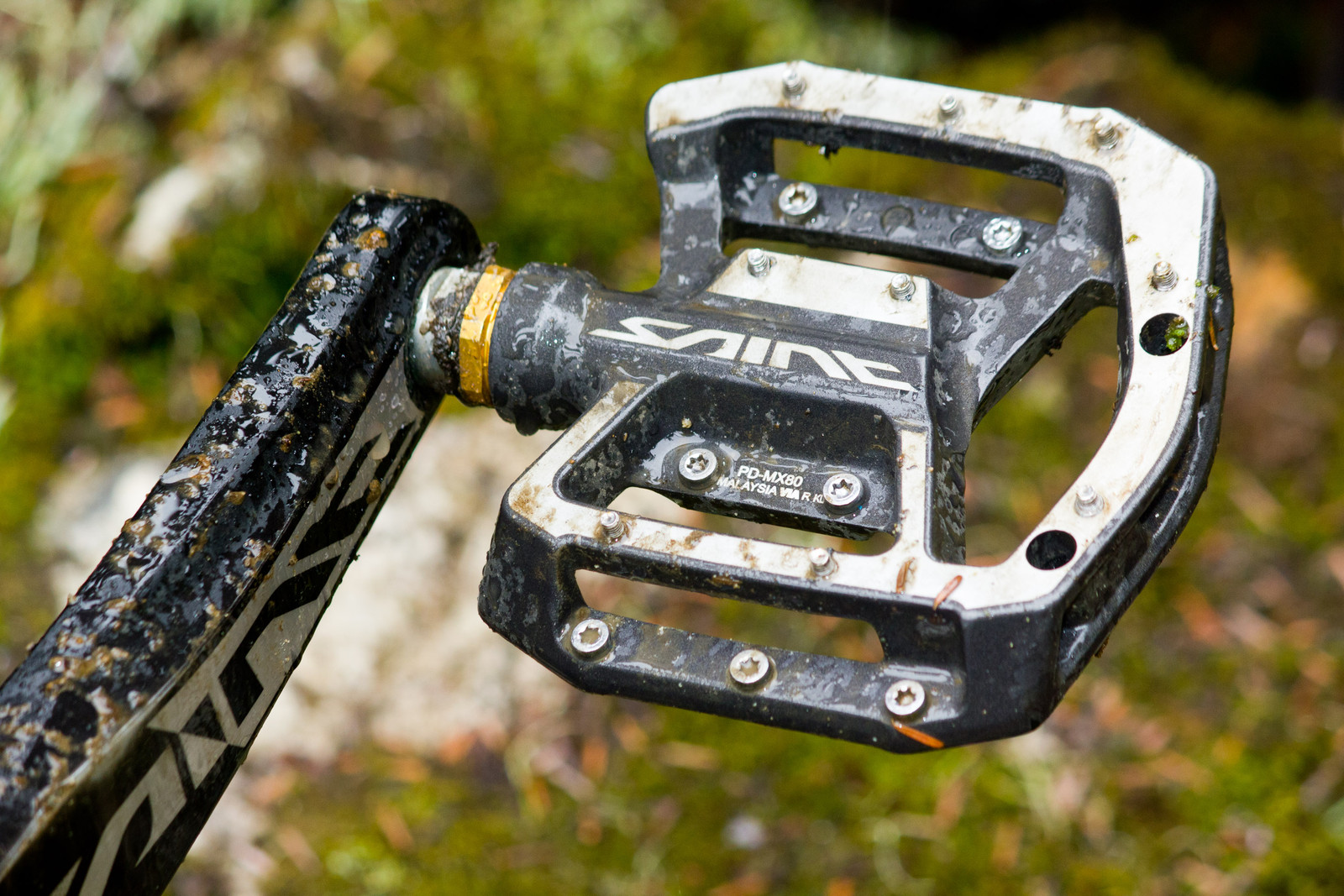 Shimano Saint PD-MX80 Pedals - First Look: Vital's Pre-Production Shimano Saint Equipped V-10 Carbon - Mountain Biking Pictures - Vital MTB