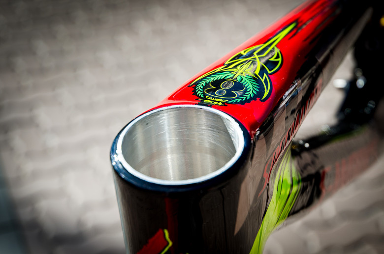 Details Details Details - First Look: Limited Edition 2013 Specialized / Troy Lee Designs Frames - Mountain Biking Pictures - Vital MTB