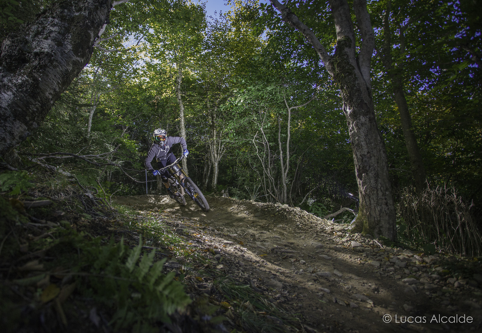 Mike Thomas + Snowshoe = Shred! - Lucas_Alcalde - Mountain Biking Pictures - Vital MTB