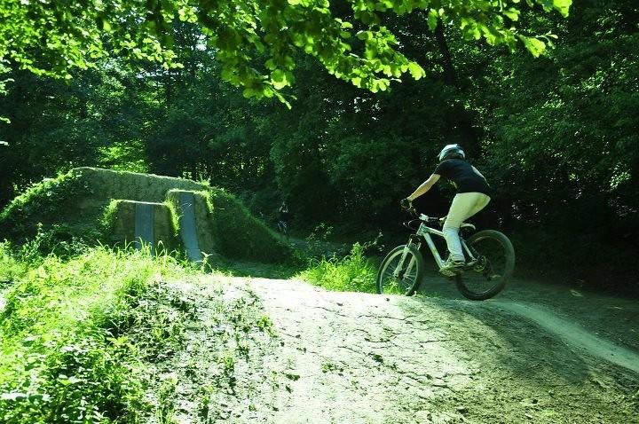 Divjina - jaka.hartman - Mountain Biking Pictures - Vital MTB