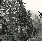 C138_vinaymenonphotography_mountainbiking_192
