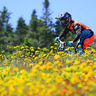C138_sugarbush_biking_078