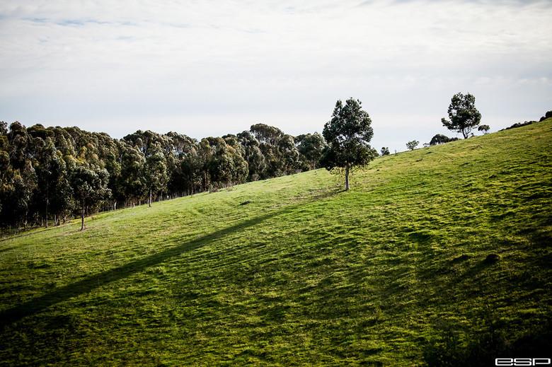 Landscape - ewaldsadie - Mountain Biking Pictures - Vital MTB