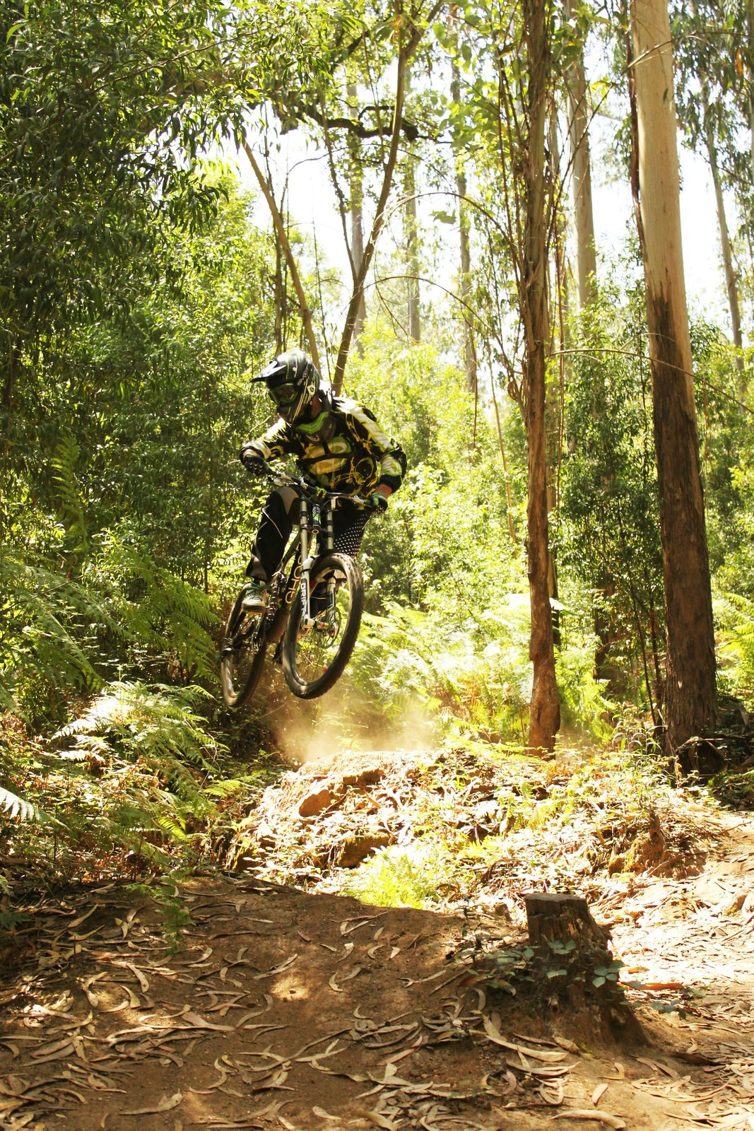 Whip - DoubleCrownKing - Mountain Biking Pictures - Vital MTB