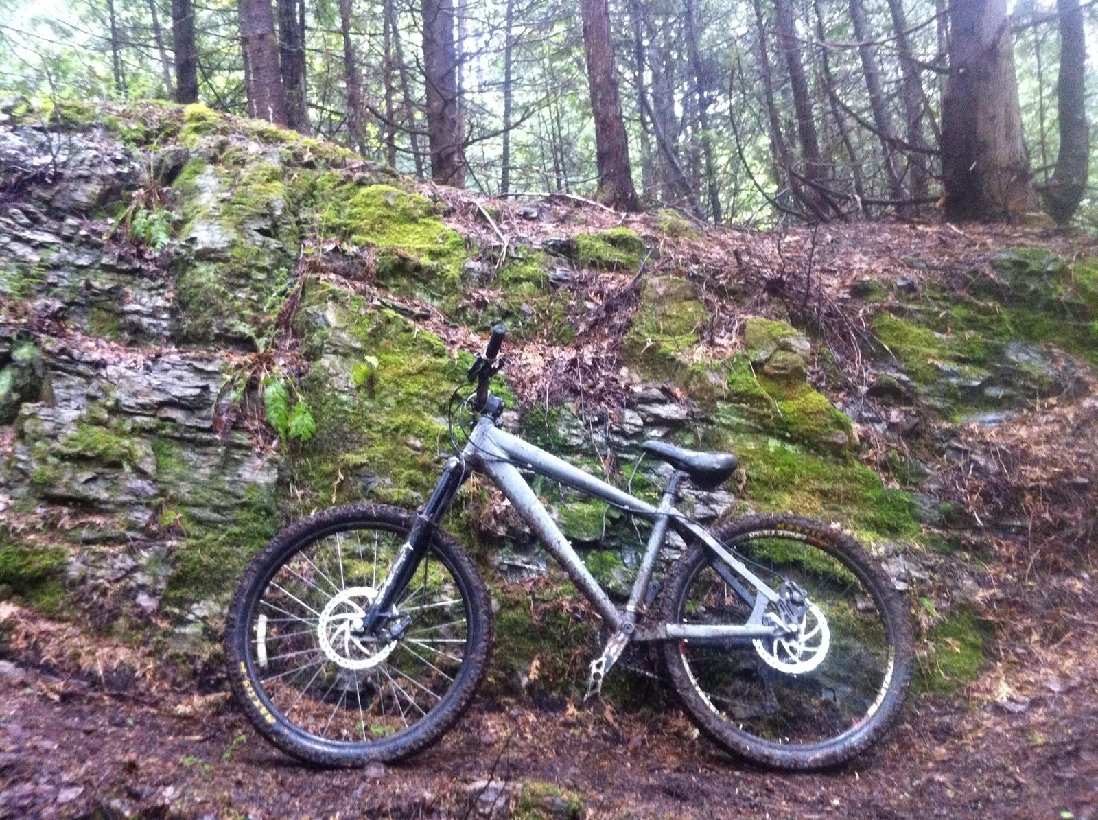 image - Michael_MacBeth - Mountain Biking Pictures - Vital MTB