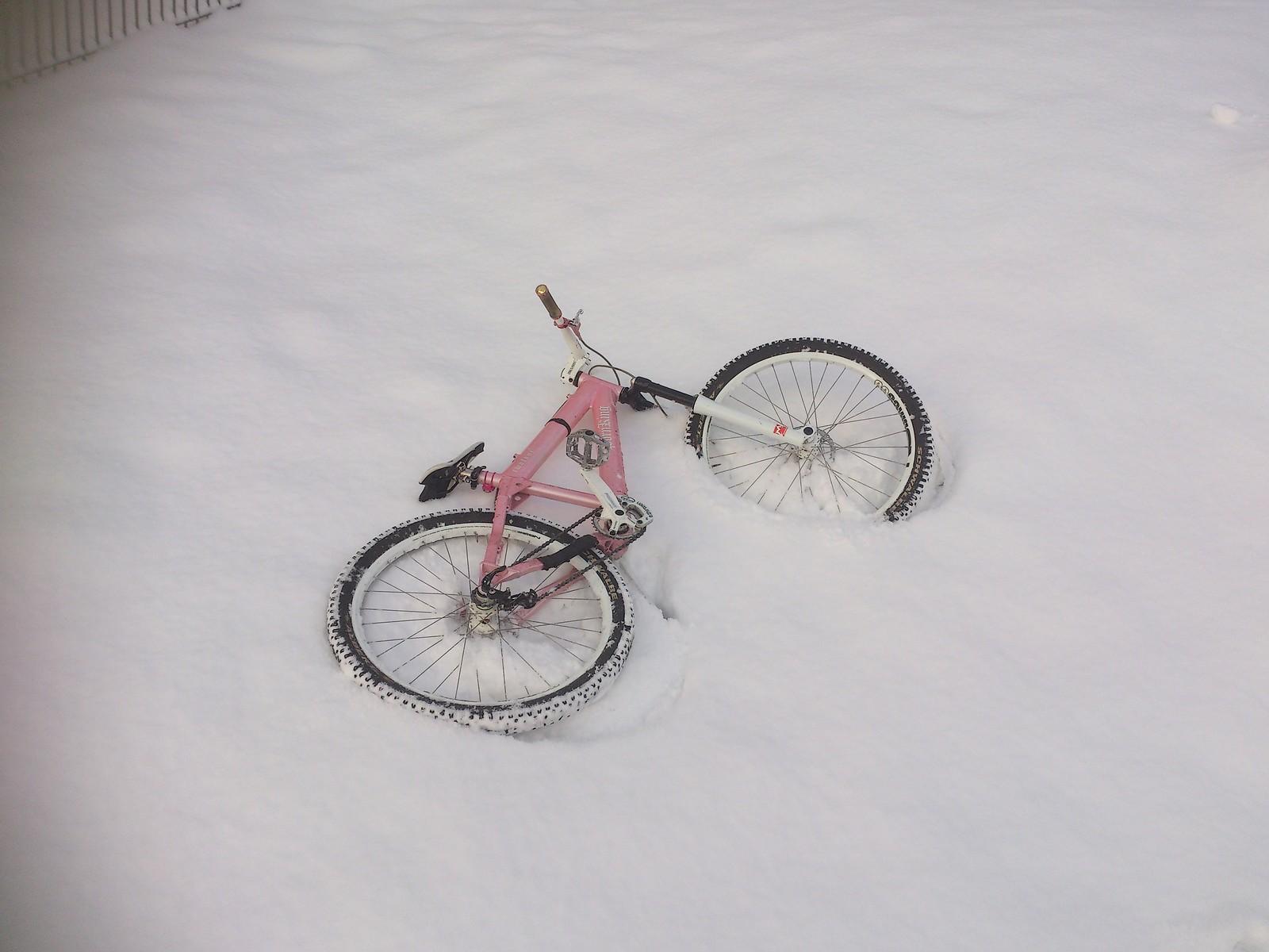 DSC 4909 - marcel.geel - Mountain Biking Pictures - Vital MTB