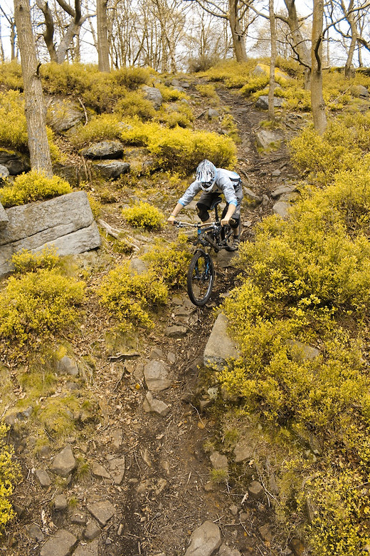 Tom Markham - gibson_65 - Mountain Biking Pictures - Vital MTB