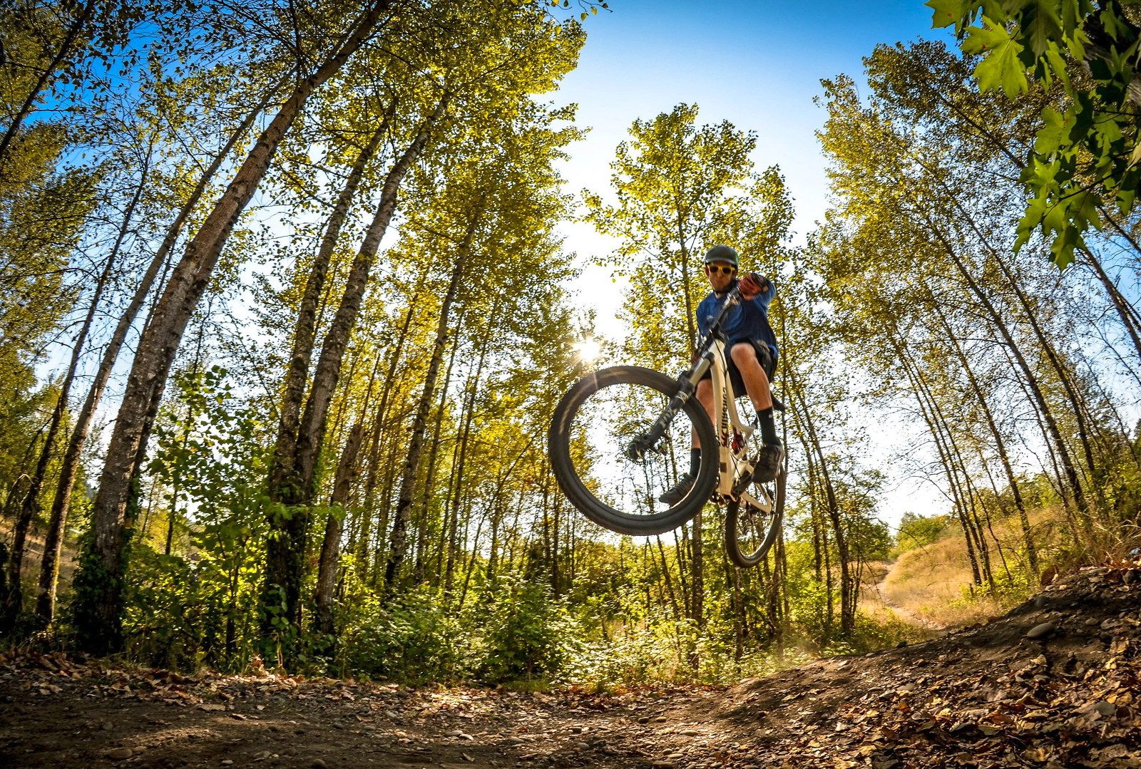 Best summer season  - John_Bamford - Mountain Biking Pictures - Vital MTB