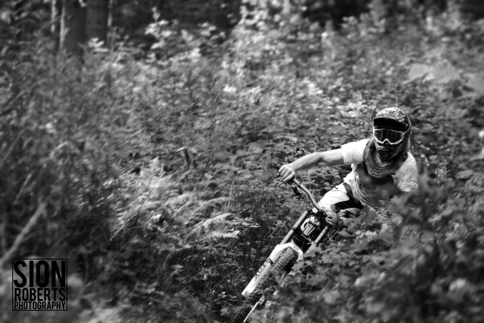 A Berm Through Bracken B&W - sionr644 - Mountain Biking Pictures - Vital MTB