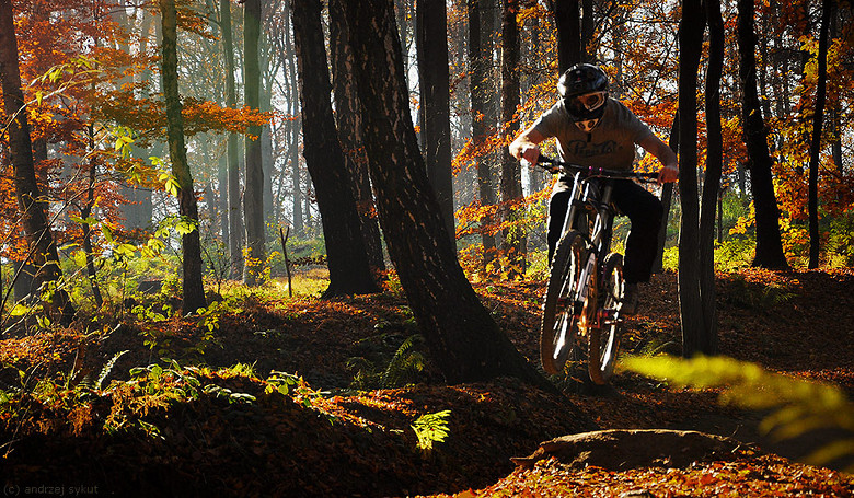 Home trails I - azazel - Mountain Biking Pictures - Vital MTB