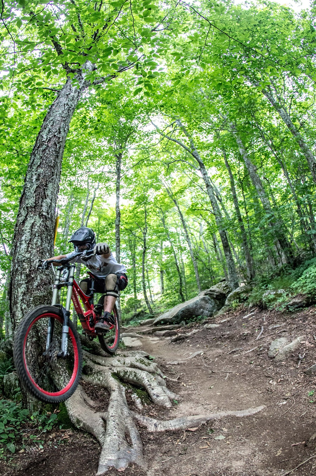 IMG 3847 - mtndrew - Mountain Biking Pictures - Vital MTB