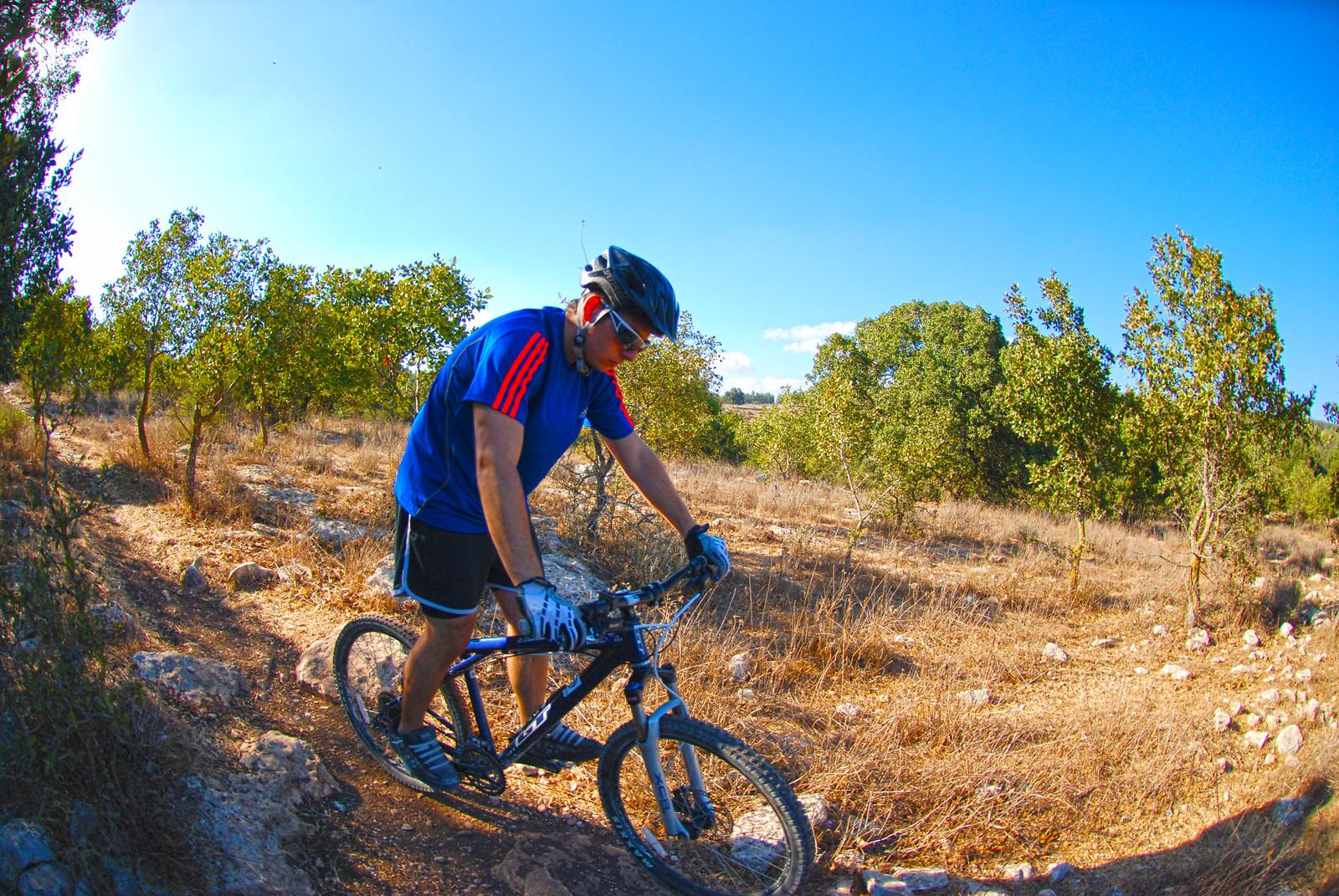 DSC 0049 - omer kop - Mountain Biking Pictures - Vital MTB