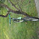 C138_alexs_bike_001