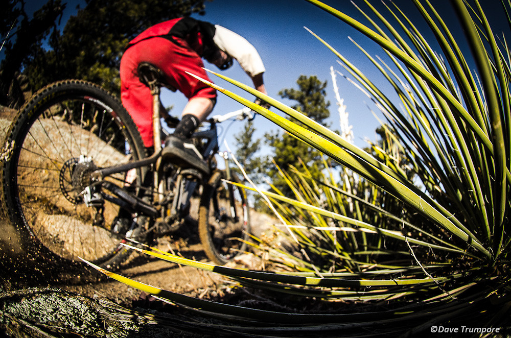 Dave Trumpore Self-Portraits   - davetrumpore - Mountain Biking Pictures - Vital MTB