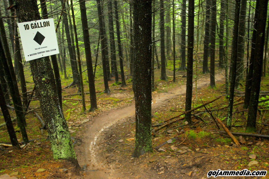 Friday Rain and Fog = Empty Trails - gojammedia - Mountain Biking Pictures - Vital MTB