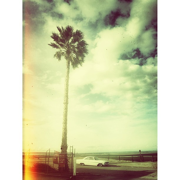 #SuperSession - Palm Trees and Hot Rods = California - #SuperSession on Instagram - Mountain Biking Pictures - Vital MTB
