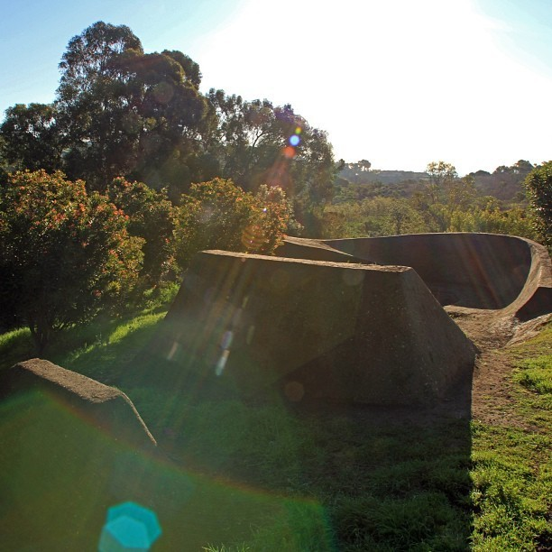 Marshall's Yard is A Work of Art - Trail Photos You Should See - Mountain Biking Pictures - Vital MTB