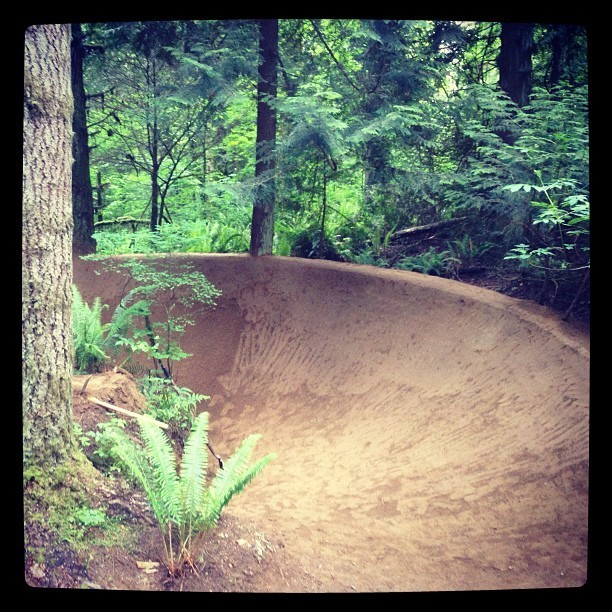 NASCAR Approved Left Berm - Trail Photos You Should See - Mountain Biking Pictures - Vital MTB