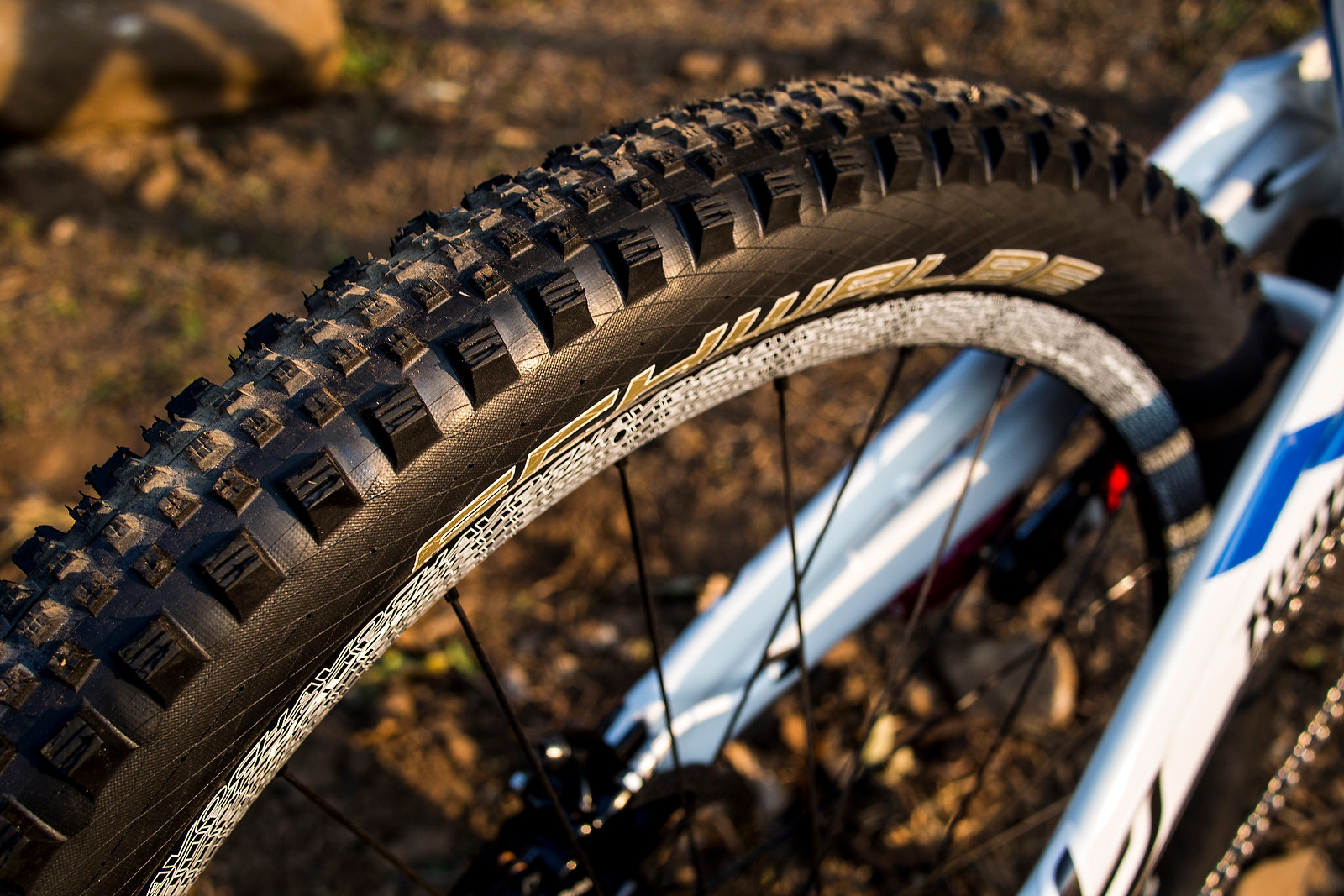 Schwalbe Rock Razor DH Tire for World Champs - WORLD CHAMPS BIKE - Emmeline Ragot's Lapierre DH 720 - Mountain Biking Pictures - Vital MTB
