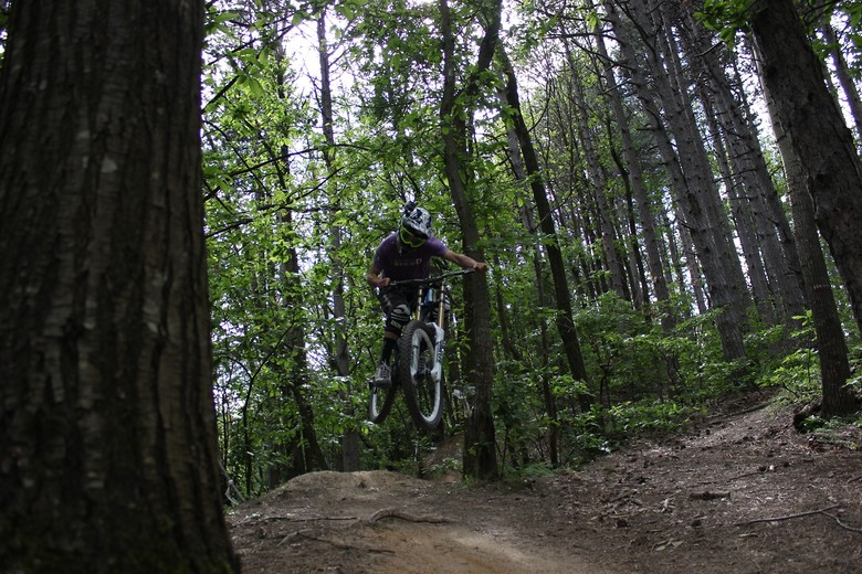 grmx_pinewood - Grammyx - Mountain Biking Pictures - Vital MTB