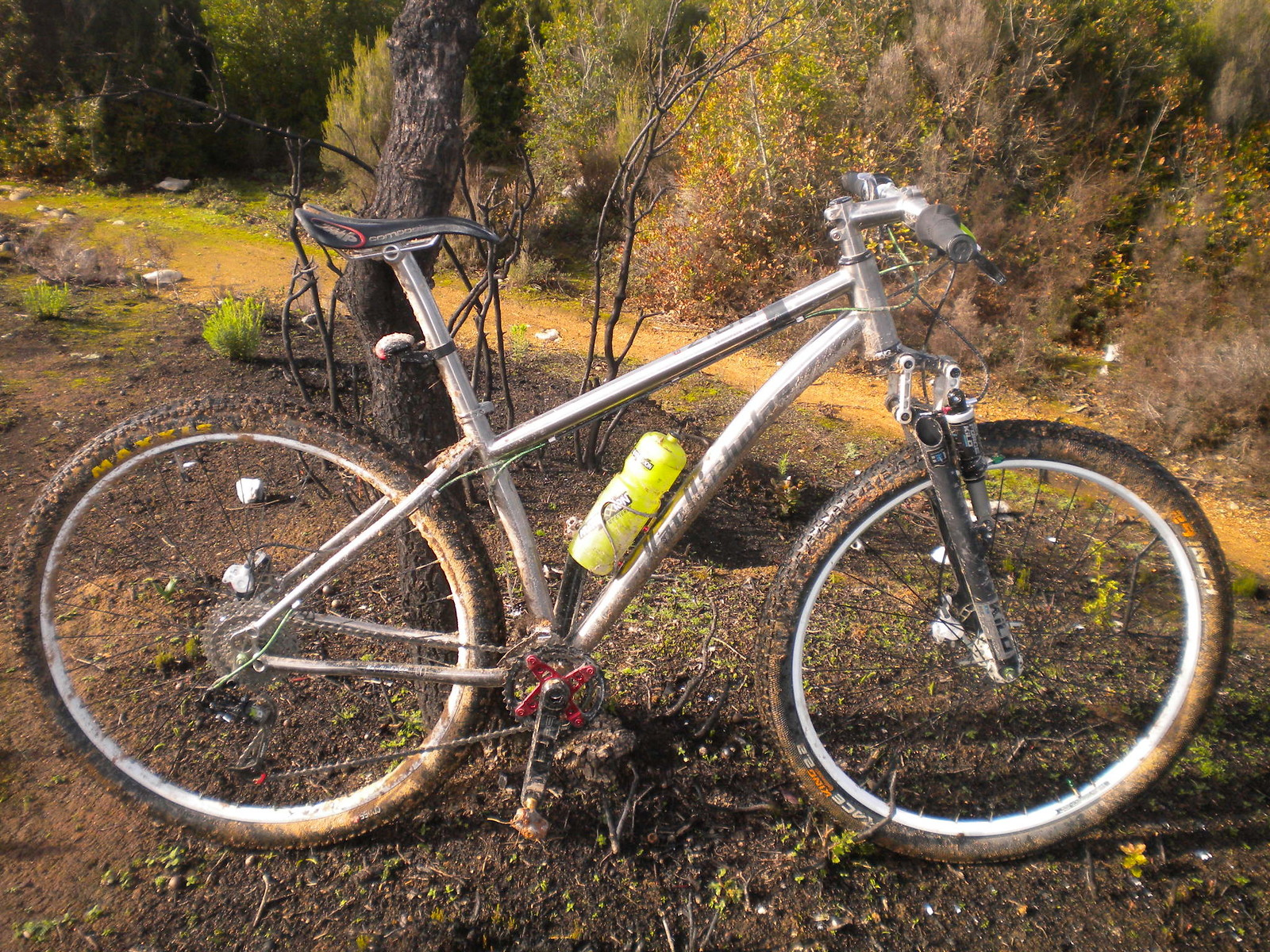 Van Nicholas Zion 29er - tomazzini.bikes - Mountain Biking Pictures - Vital MTB
