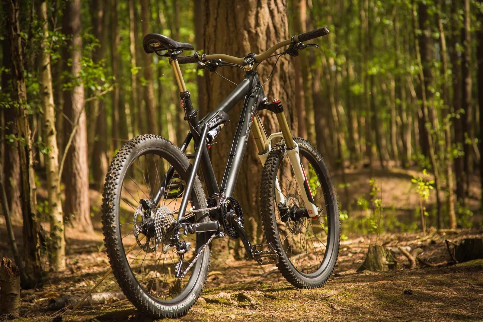 Liteville 301 mk11 m  4 - teknorob - Mountain Biking Pictures - Vital MTB