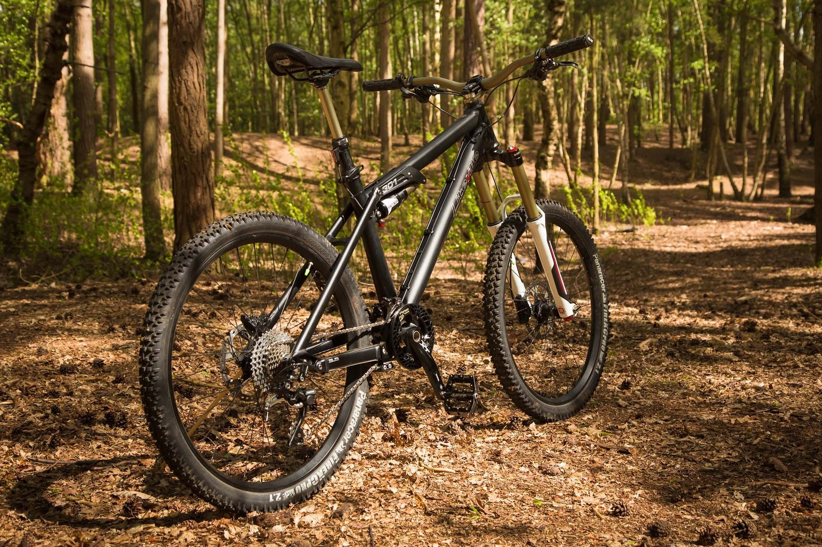Liteville 301 mk11 m  6 - teknorob - Mountain Biking Pictures - Vital MTB
