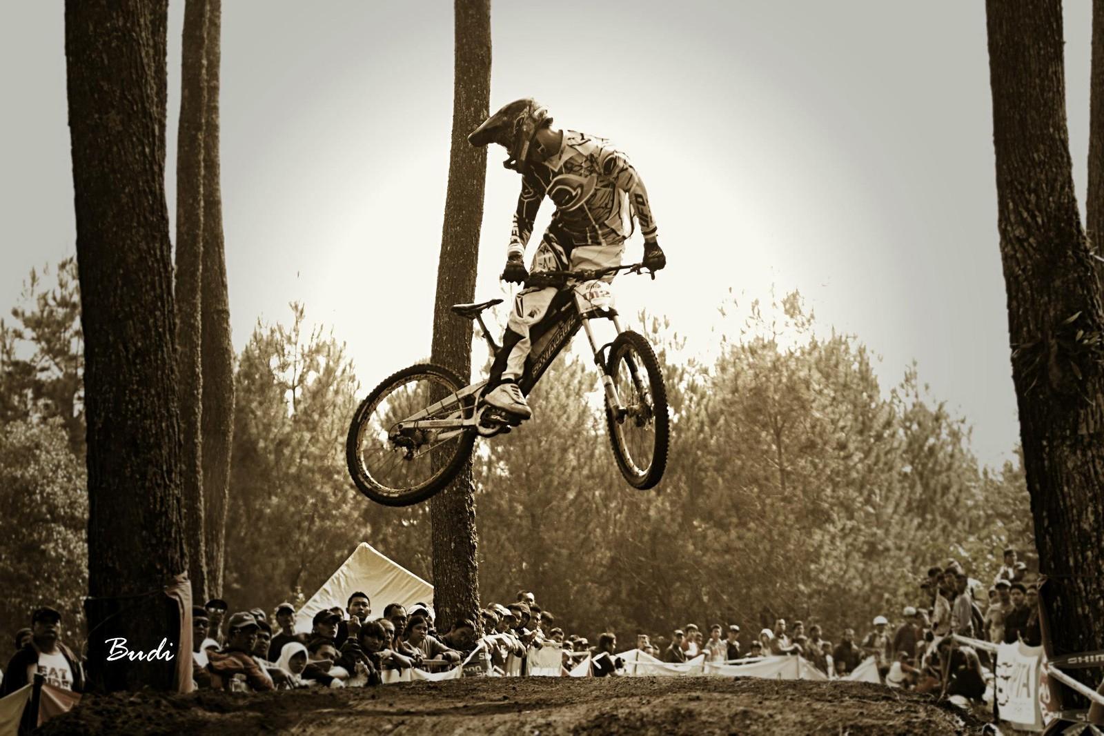 whip it ! - budi - Mountain Biking Pictures - Vital MTB