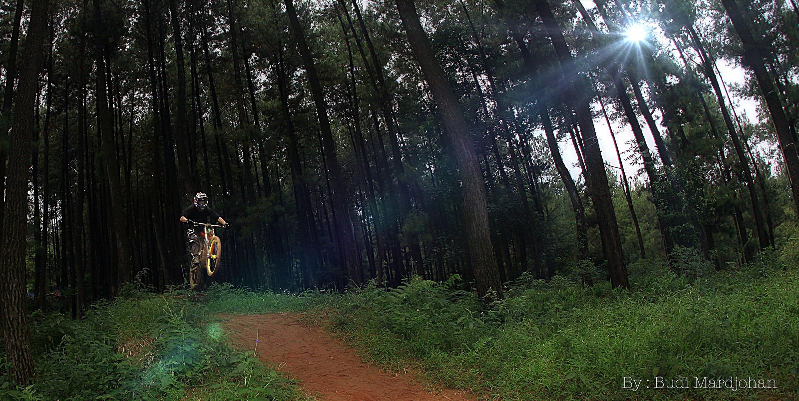 Ray of Light ! - budi - Mountain Biking Pictures - Vital MTB
