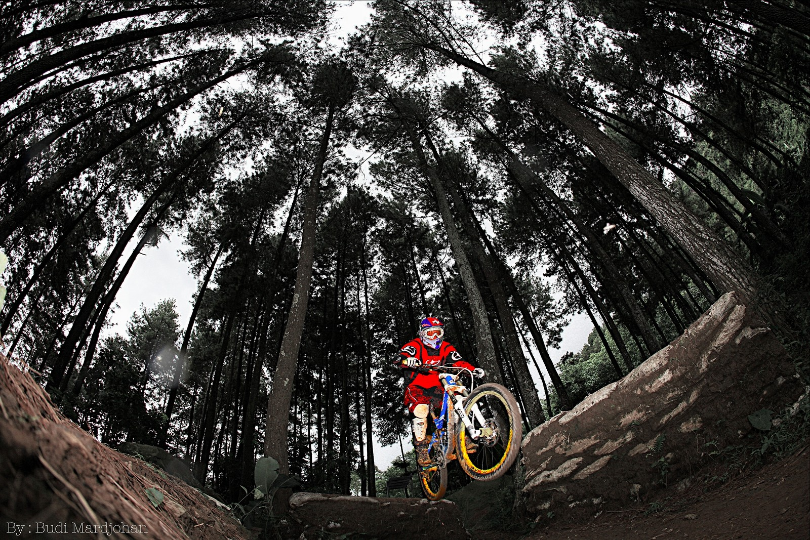 Sebex MTB DH Park Indonesia - budi - Mountain Biking Pictures - Vital MTB