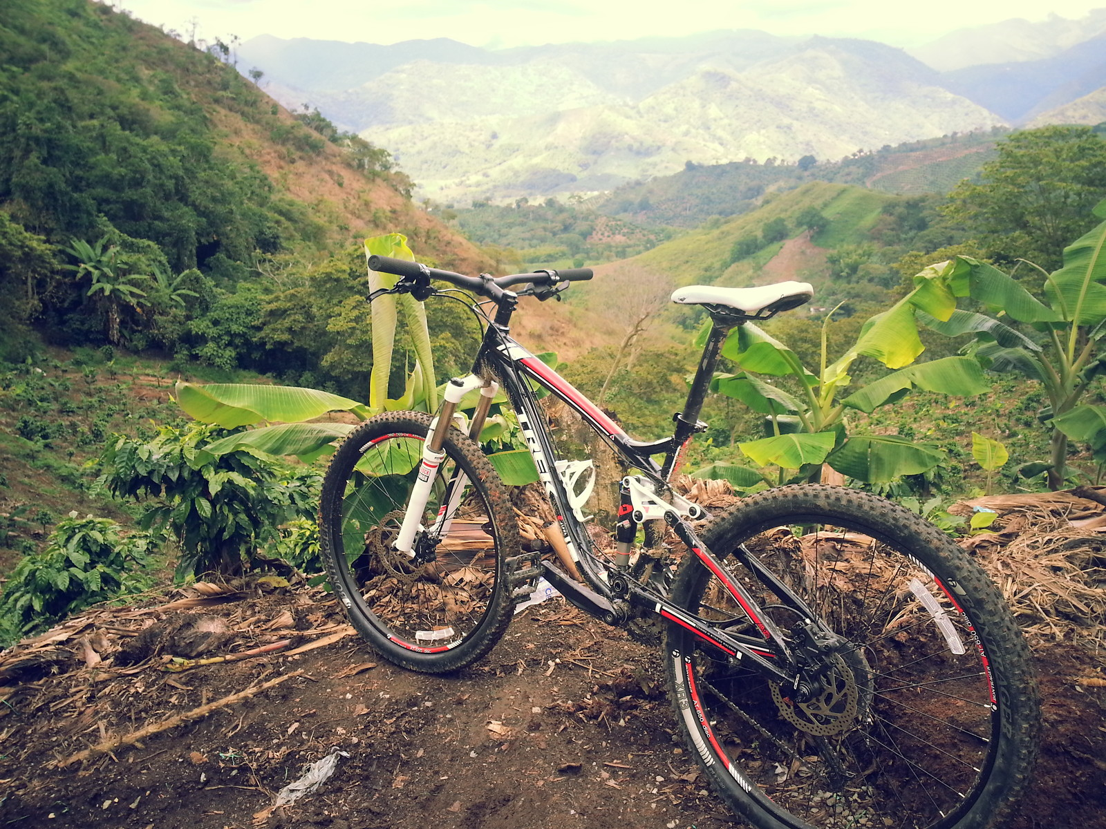 Fuel ex 4 - felipe.tulander - Mountain Biking Pictures - Vital MTB