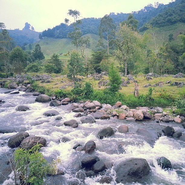 Salento, Quindio, Colombia. - felipe.tulander - Mountain Biking Pictures - Vital MTB