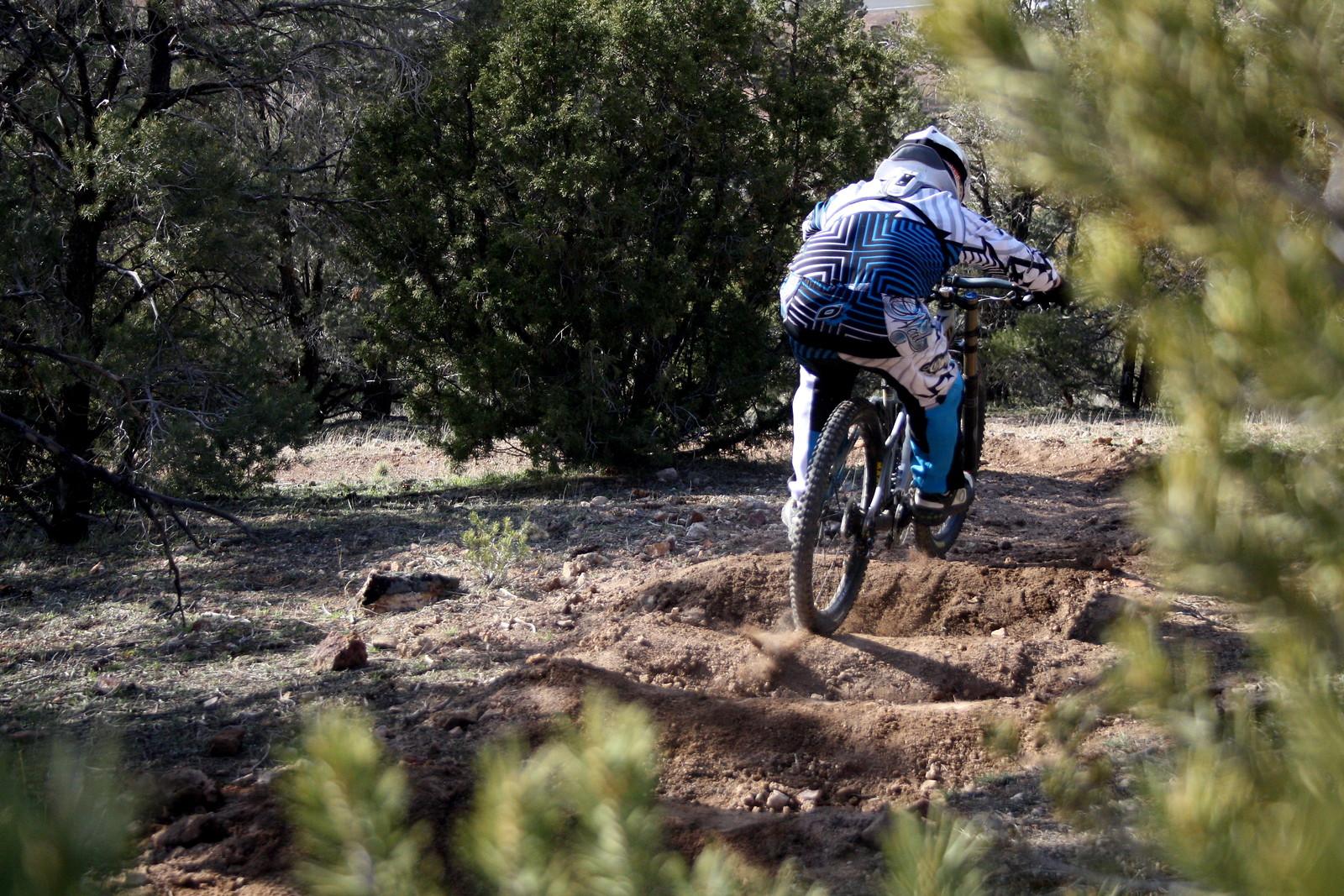 Geiger DH - jptree - Mountain Biking Pictures - Vital MTB