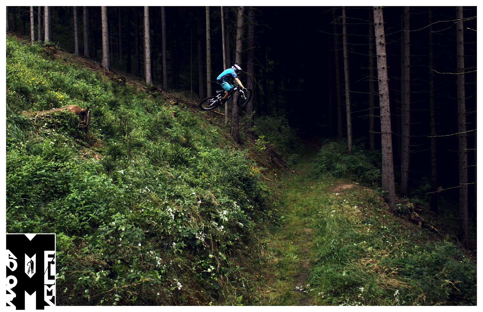 Pavel Schwarz - Roadgap - Mad Moss - Mountain Biking Pictures - Vital MTB