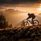 C138_golden_hour_biking