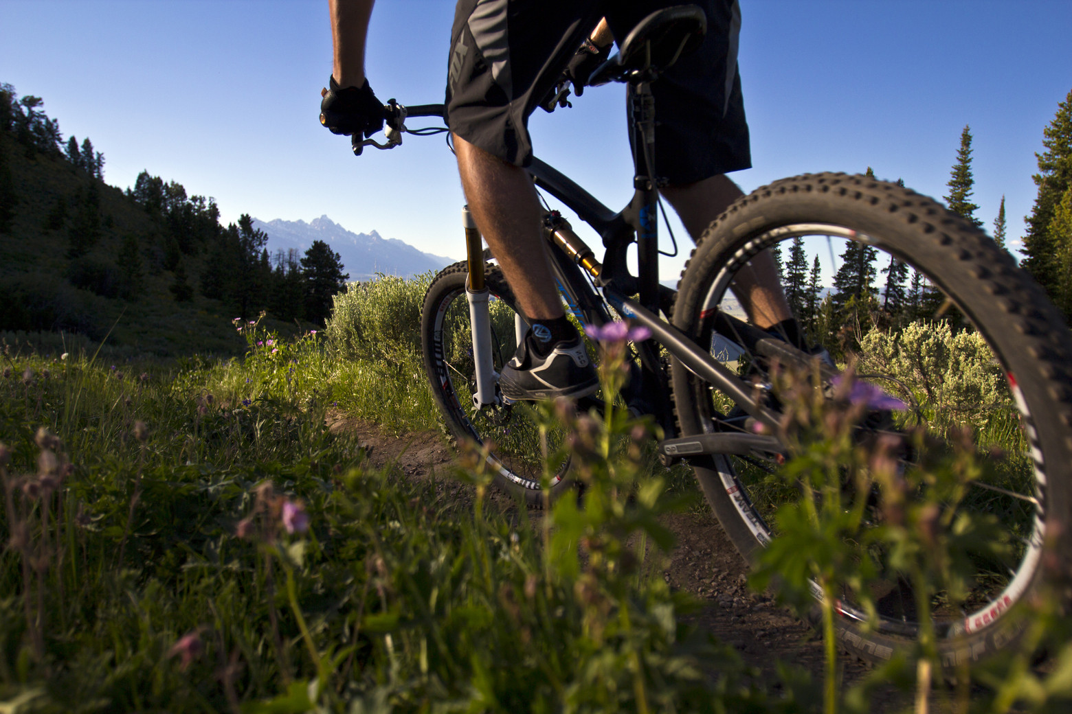 Teton Backdrop + Glorious Descent - jacksonholemountainresort - Mountain Biking Pictures - Vital MTB