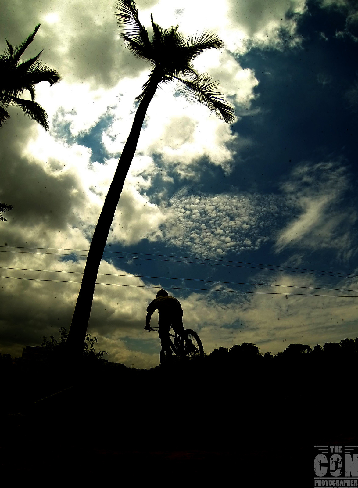 Into the Horizon - robin.conz - Mountain Biking Pictures - Vital MTB
